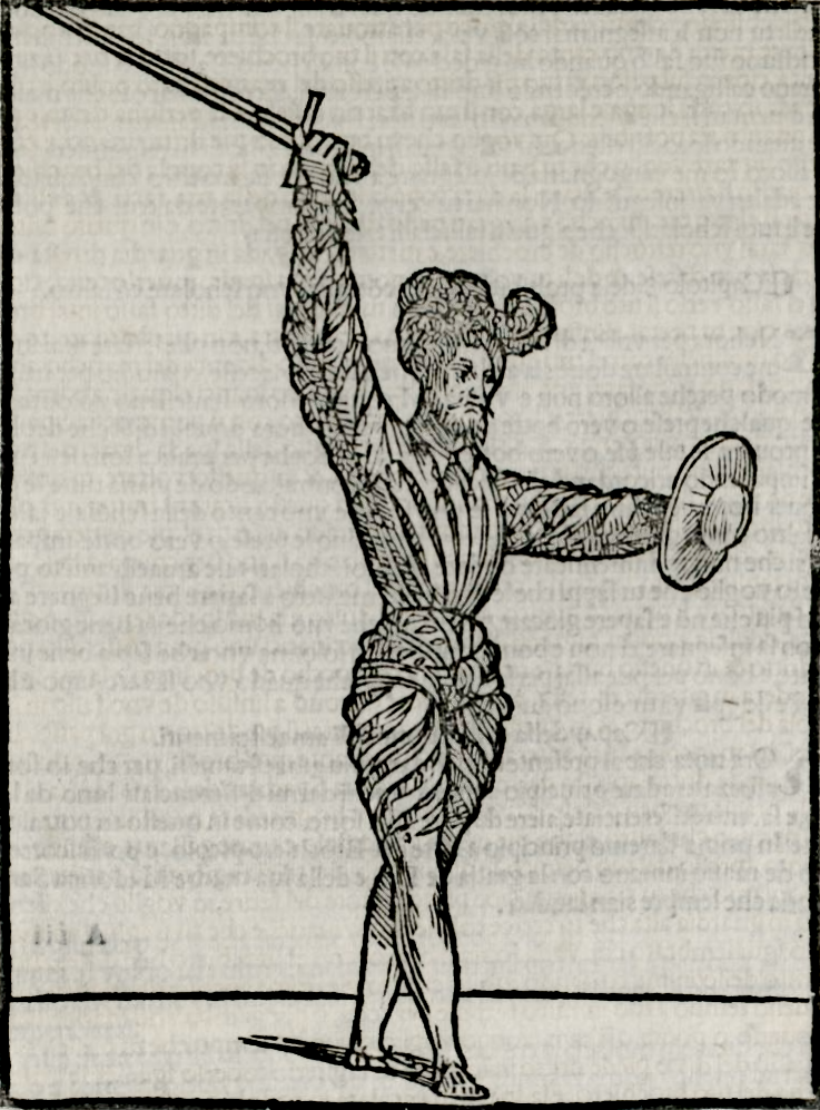 THE NEW WORLD MYTHOLOGY IN ITALIAN EPIC POETRY: 1492-1650 | Carla ...