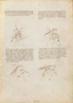 MS M.383 11r.png