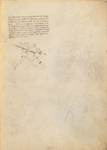 MS M.383 17r.png