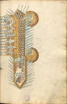 MS B.26 072r.png