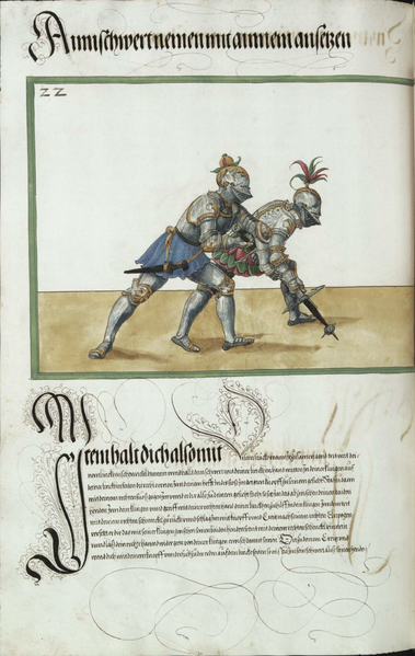 File:MS Dresd.C.94 214v.png